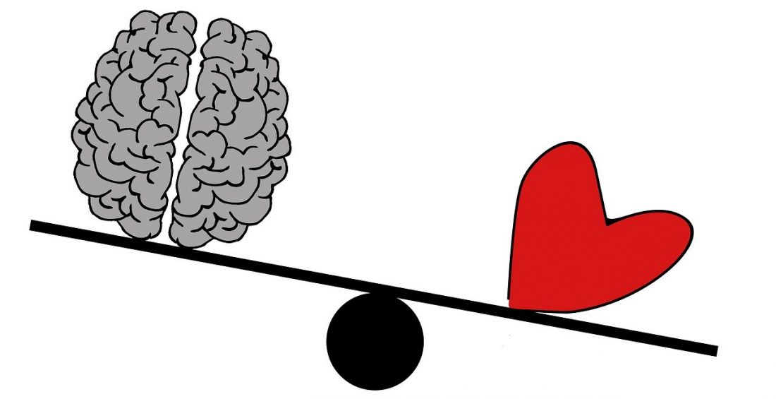Heart and brain on seesaw toy