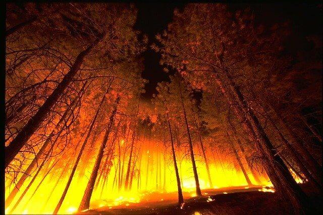 Wildfires, blaze, smoke